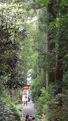 箱根神社 大きな鳥居の向こうに長い階段