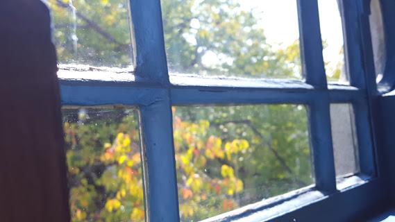 個性的な真っ青な空のような窓からの庭の眺め