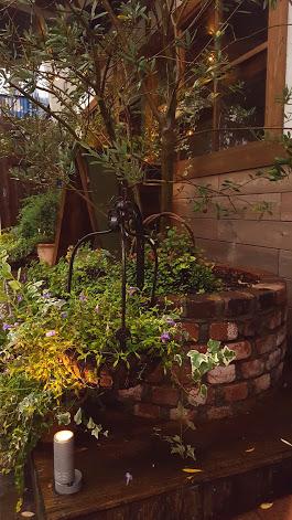 オリーブをシンボルツリーにまとまったお庭