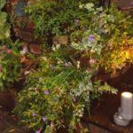 秋 ガーデニング 花を変えるだけ