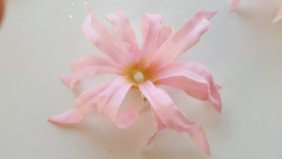 花芯を取り除き花びらのみにします