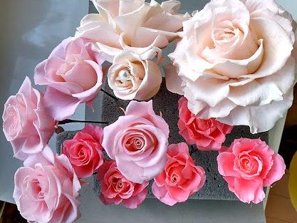 開花の終わったバラ パール付きのバラも
