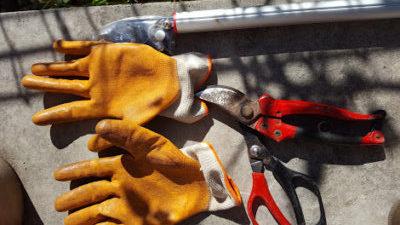 手のひら部分が厚手の手袋は必需品