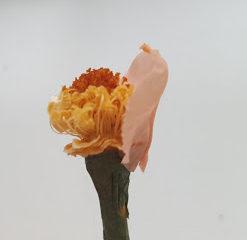 グルーでつけるのはバラの花びらの先端