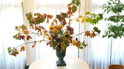 効用を思いっきり広げた大胆アレンジ