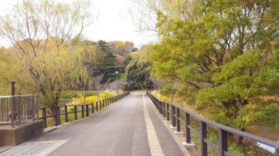 池の間の橋