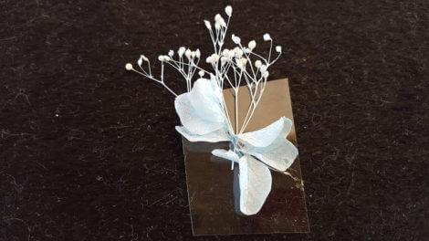プラスティック板に花を透ける