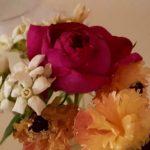 夏の切り花を長持ちさせる方法 枯れる花を日持ちさせるには?