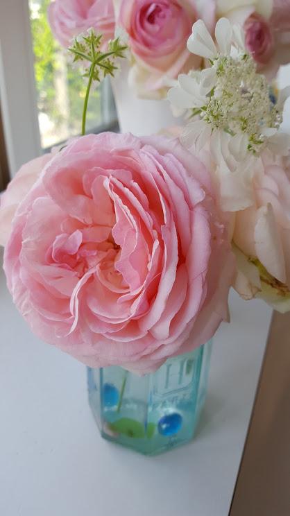 ジャムの空き瓶にバラとオルレア