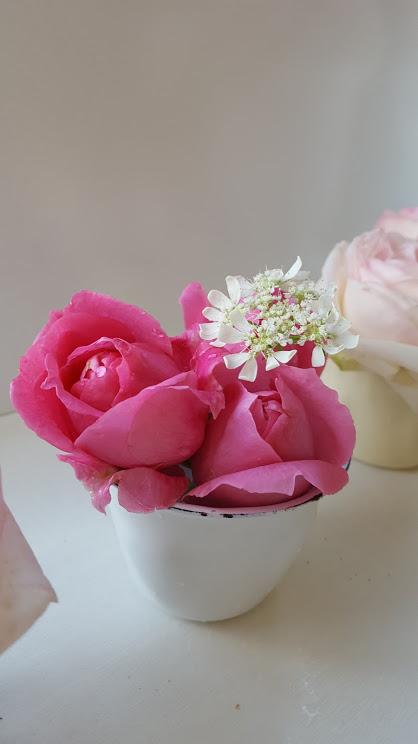 ブリキのカップとバラとオルレア