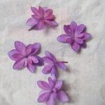 押し花の作り方 色鮮やかに作る方法 自由研究、ハーバリウムに使える