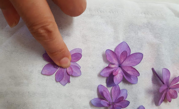 浮き上がった花びらを抑えて形を整える