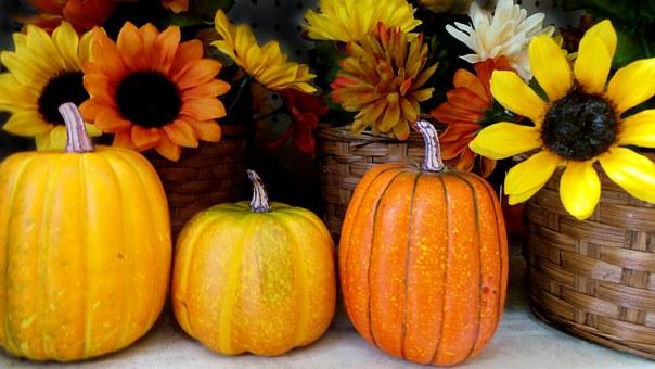 かぼちゃとひまわり