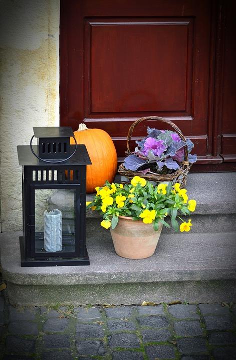 カボチャとテーマカラーのお花