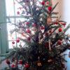 クリスマスツリー その由来は? 飾るのはいつから?