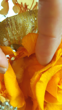 アモローサを開花させる