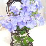 ワイヤーのかごの作り方 簡単に手作りでお花を飾るのに最適