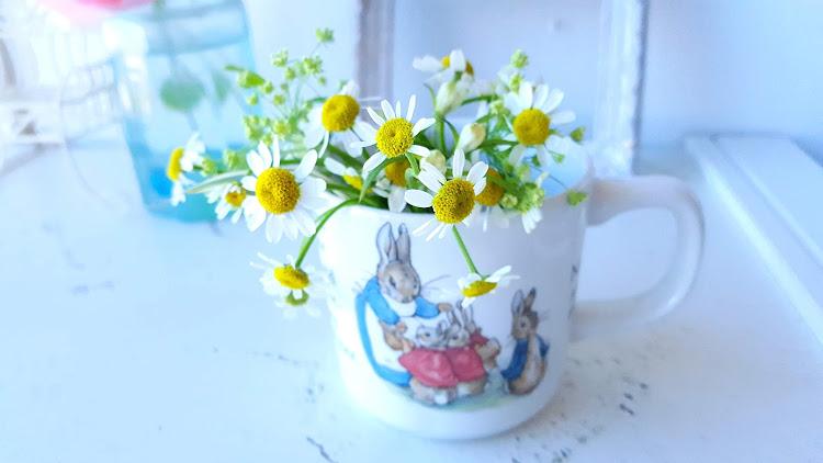 元気な小花