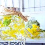 ハーバリウム イエローのミモザで春を呼び込みます!作り方をご紹介
