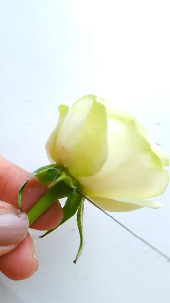 バラにピアスメソッドでワイヤリング